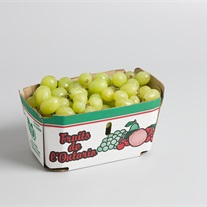 grapes carton tray